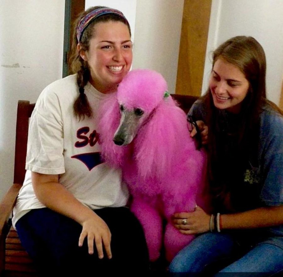 Sarah Koplin and Lucy Jenkins enjoy a smile with the pink poodle