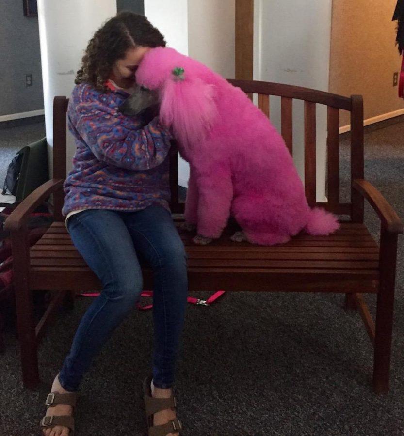 Freshman Emma Quintal gets a smooch with the pooch