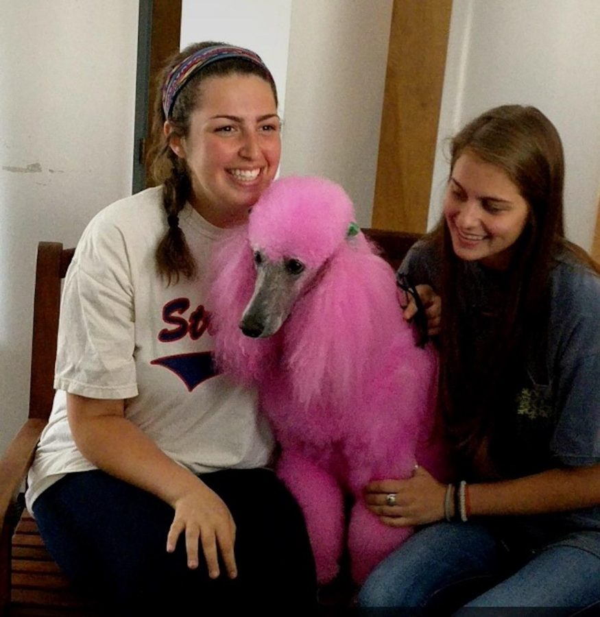 Blossom stares off into the distance as juniors Lucy Jenkins and Sarah Koplin smile for a picture