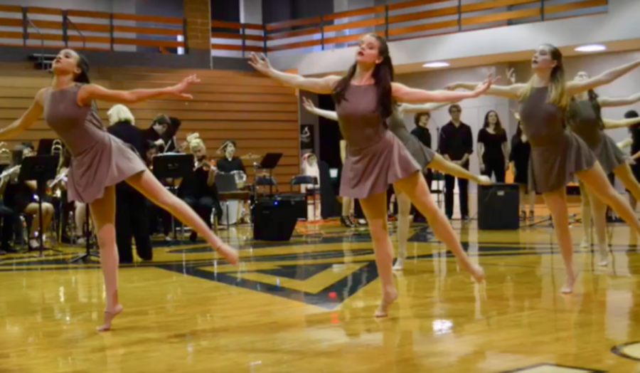 5. Fine Arts Dancers