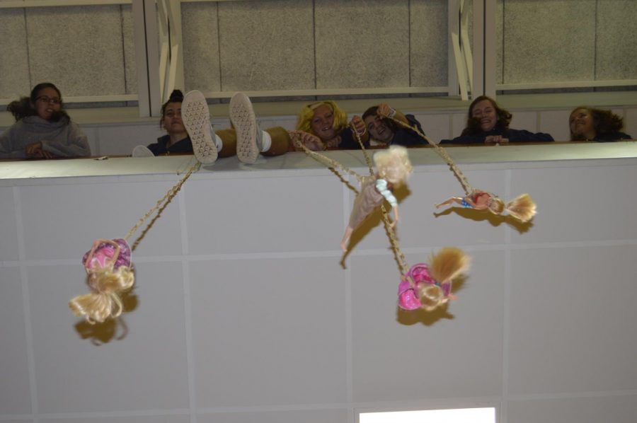 Boswell's Bungee Barbies