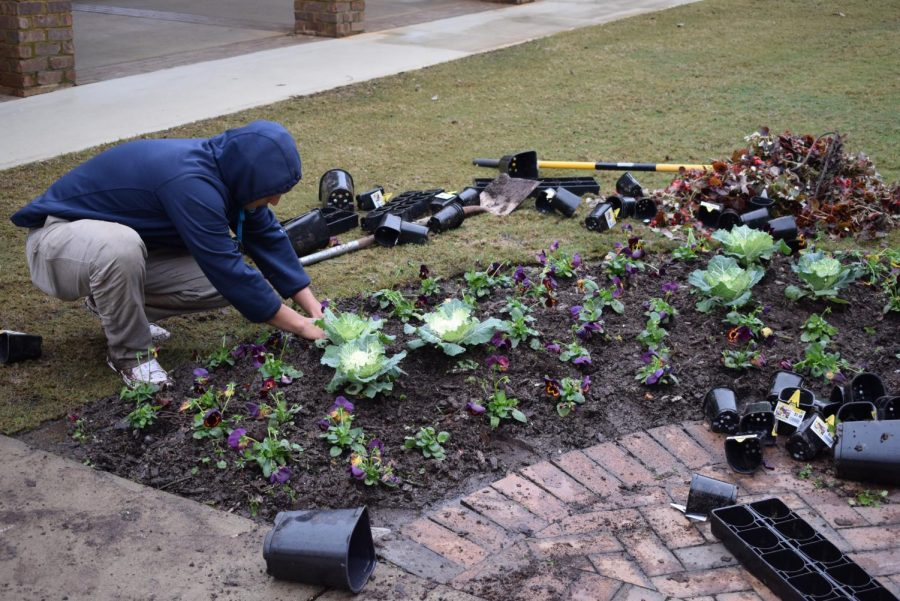 Jesus Oberle, who works for Evergreen Landscaping, planting flowers around the flagpole.