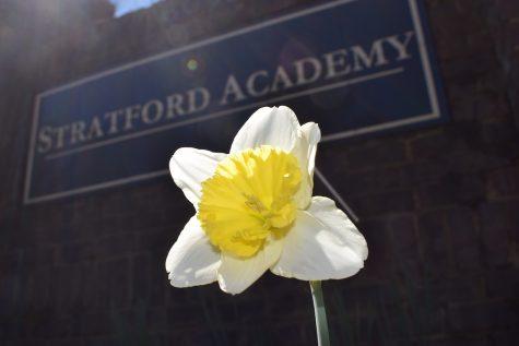Good Morning, Stratford Thursday March 4